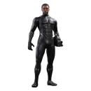 Black Panther Hot Toys